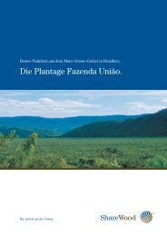 Die Plantage Fazenda União. - ShareWood Switzerland AG