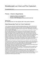 Fallbeispiel Eselschutz Maloja - Herdenschutz Schweiz