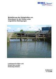 Modellierung des Salzgehaltes von Strandseen an der Ostsee unter ...