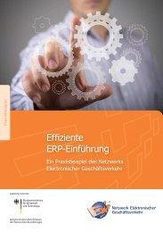 """Praxisbeispiel """"Effiziente ERP-Einführung"""