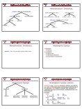 Morphologische Modelle - Seite 5