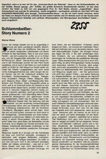 Schlammbeisser - Story Numero 2 - oerred.dk