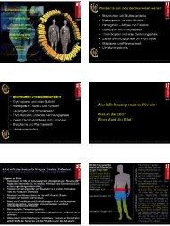 Microsoft PowerPoint - VL-Blutbildung-Gerinnung-030710-tiff.ppt