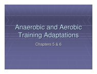 Anaerobic And Aerobic Training Adaptations (Ch. 5-6) - FAMU.edu