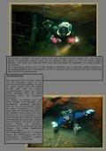 Durch das Labyrinth der Opalwelt - Seite 2