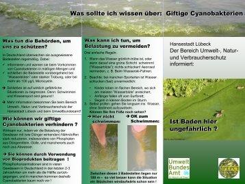 Was sollte ich wissen über: Giftige Cyanobakterien - Umweltschutz ...