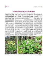 [PDF] Dokument ansehen - Bauernblatt Schleswig-Holstein