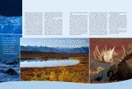 im hohen Norden - Naturbild.ch