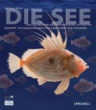 See - Matthaes Verlag GmbH