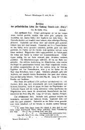 Revision der paläarktisclien Arten der Gattung ... - Senckenberg