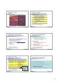 Medikamentös-toxische Hepatopathie - Magen-Darm-Zentrum - Seite 5