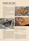 Beilage zum Naturschutzreport 2/2012 - LBV - Page 2