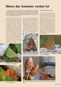 Beilage zum Naturschutzreport 2/2012 - LBV - Page 7