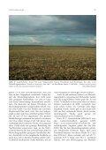 Durchzug des Mornellregenpfeifers Charadrius morinellus - Otus e.V. - Seite 6