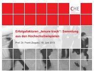 CHE_Vortrag_Erfolgsfaktoren_Tenu... (pdf)