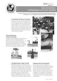 Dachbegrünungen auf kirchlichen Gebäuden - und Umweltschutz ...