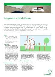 Faktenblatt Lungenkrebs durch Radon - Lungenliga