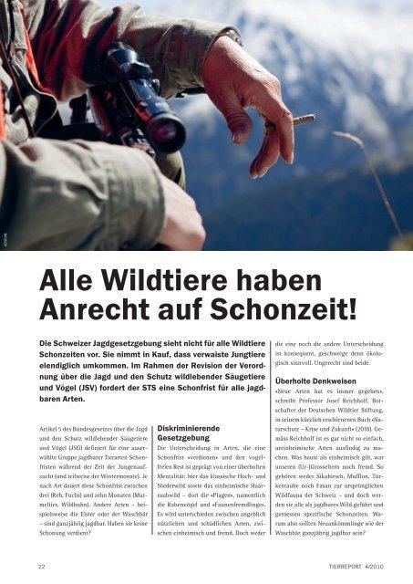 Wildtiere haben Anrecht auf Schonzeit! - Schweizer Tierschutz STS