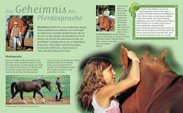 Pferdesprache für Kinder - Eschbach Horsemanship