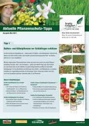 2011_05_celaflor_pflanzenschutztipps 2
