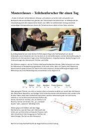 Masterclasses – Teilchenforscher für einen Tag