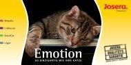 Katze Emotion - Hundeleben