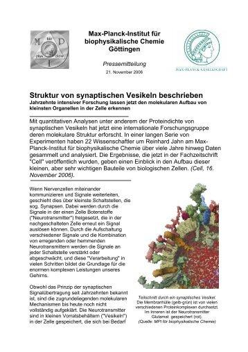 Struktur von synaptischen Vesikeln beschrieben - Max-Planck ...