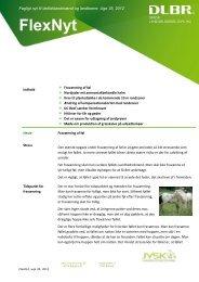 FlexNyt uge 35, 2012 - Jysk Landbrugsrådgivning