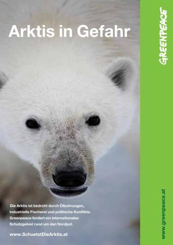Factsheet: Arktis in Gefahr - Greenpeace