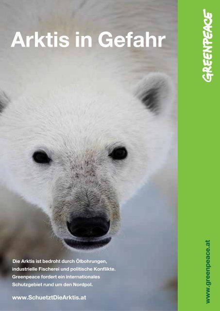 Factsheet: Arktis in Gefahr - Greenpeace