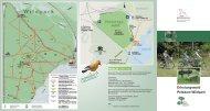 Erholungswald Potsdam Wildpark - Landesbetrieb Forst Brandenburg