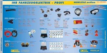 IHR FAHRZEUGELEKTRIK - PROFI - Hoelzle AG