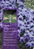 Broschuere Dauergrabpflege - Seite 2