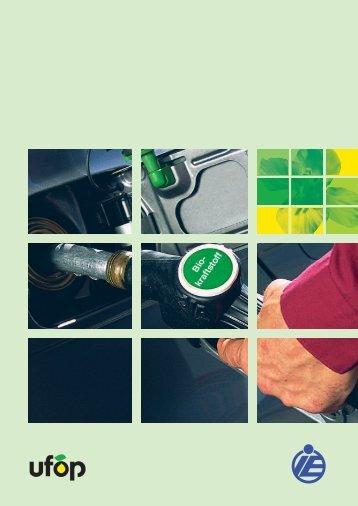 Kosten und Ökobilanzen von Biokraftstoffen - TCE GoFour