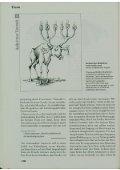 Tierethik - eine soziotheologische und didaktische Orientierung - Seite 6
