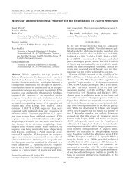 Molecular and morphological evidence for the ... - Mycologia