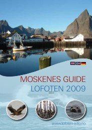 MOSKENES GUIDE LOFOTEN 2009 - DataDesign