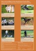 Warum nicht Hundesport? - SKG - Seite 4