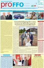 2 - Frankfurter Dienstleistungsholding GmbH (FDH)