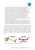 Lemon_DU_2010_Potenzialeinschaetzung.pdf - Seite 2