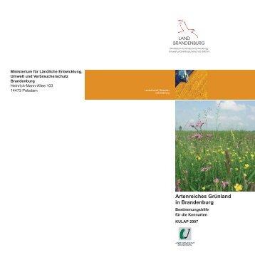 Artenreiches Grünland Bestimmungshilfe Broschüre.pdf