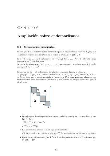 Cap´ıtulo 6 Ampliación sobre endomorfismos
