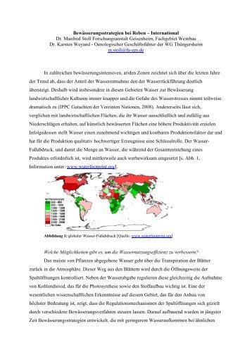 Bewässerungsstrategien bei Reben – International Dr. Manfred Stoll ...