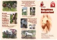 Flyer von Brigittes Reiterhof zum Download
