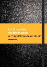 Local realities of CDM projects – A compilation of case studies