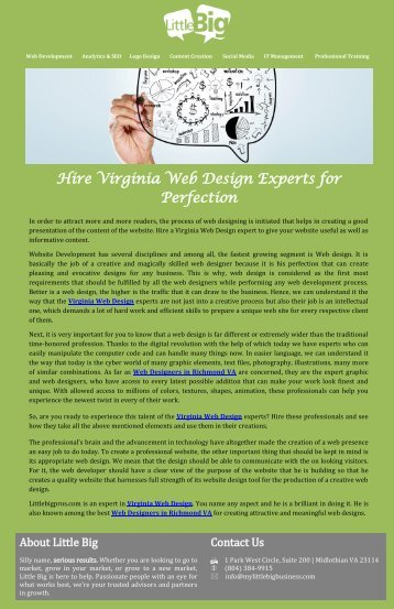 Hire Virginia Web Design Experts for Perfection