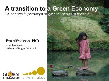 Key issues for a transition to a Green Economy – Adopting to a