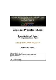 Catalogue Projecteurs Laser - Grossiste chinois import