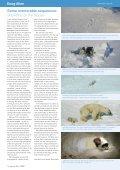 Freeze Frame - Page 4