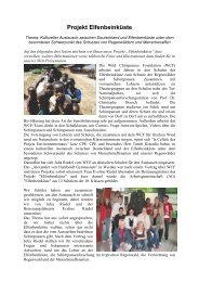 Kurzfassung des Projektes 2005(pdf) - Gymnasium Werdau